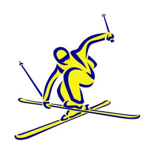 Ski Freestyle 1110