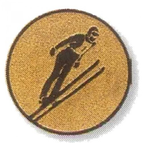 Skispringen 02118