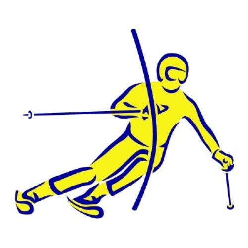 Ski Alpin Slalom 1114