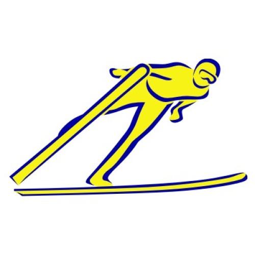Skisprung 1118