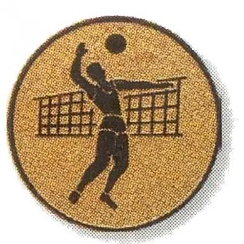 Volleyballer 02232