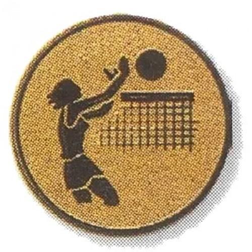 Volleyballerin 02233