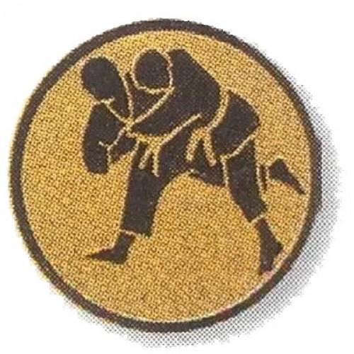 Judo 02291