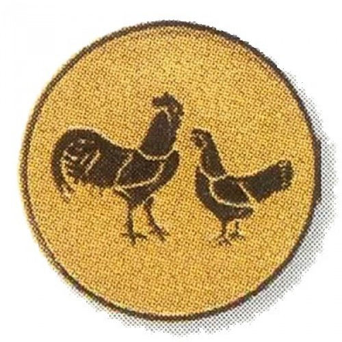 Hühnerzucht 02871