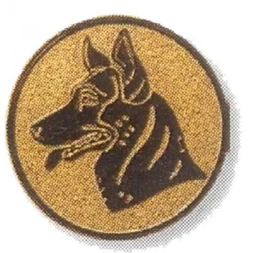 Schäferhund  02872
