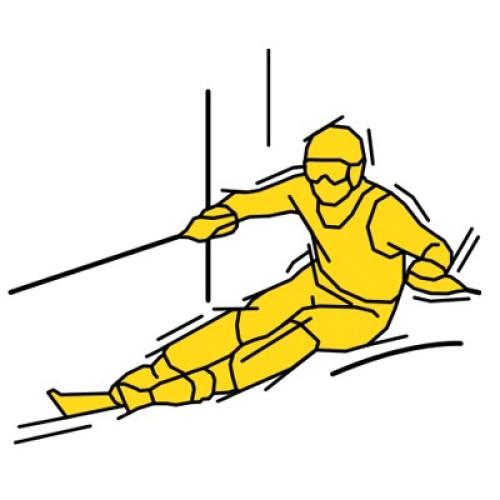 Ski Alpin Slalom 113