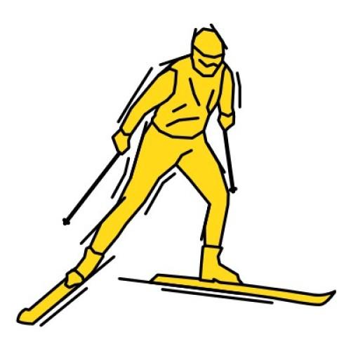 Langlauf Skating 115