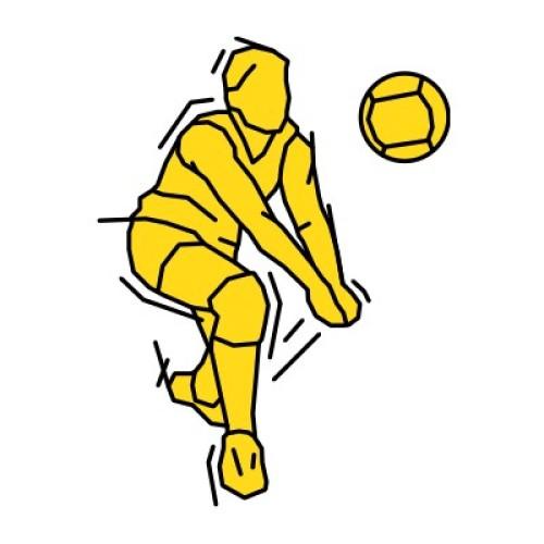 Volleyball 232