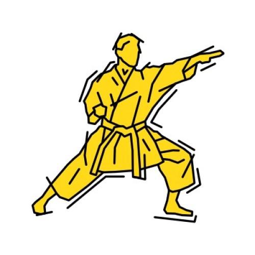 Karate 292