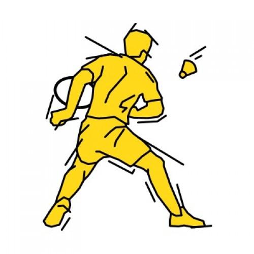 Badminton 351