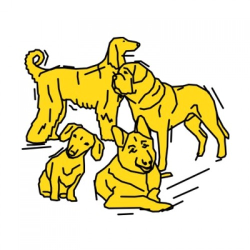 Hundesport 872