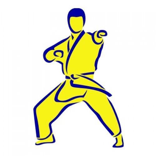 Karate 1292