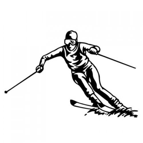 Ski-Alpin 2112