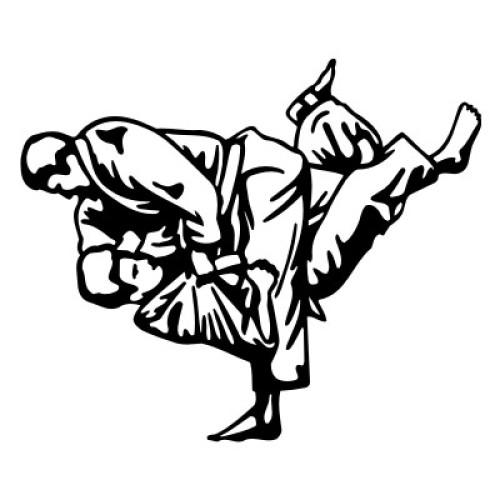 Judo 2291