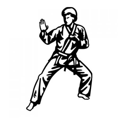 Karate 2292