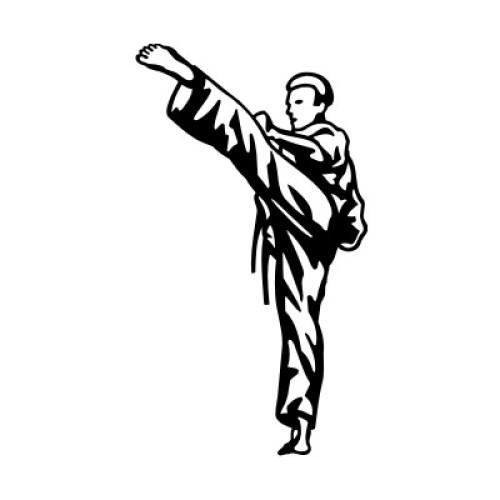 Teakwondo 2293