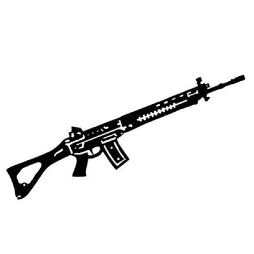 Sturmgewehr 90 2916-X