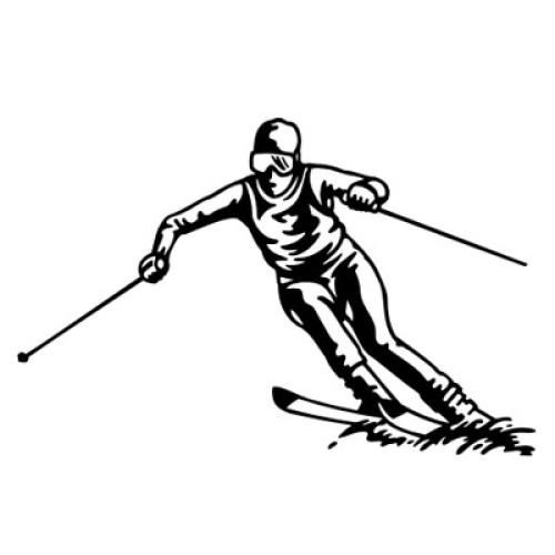Ski-Alpin 112