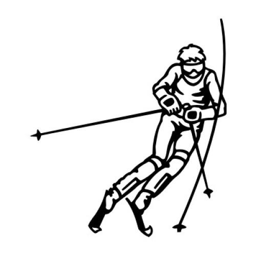 Ski-Alpin Slalom 113