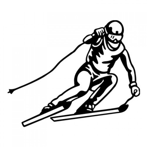 Ski-Alpin Abfahrt 114