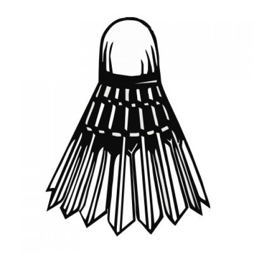 Badminton 921