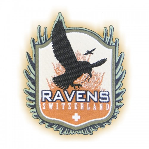 Batch RAVENS