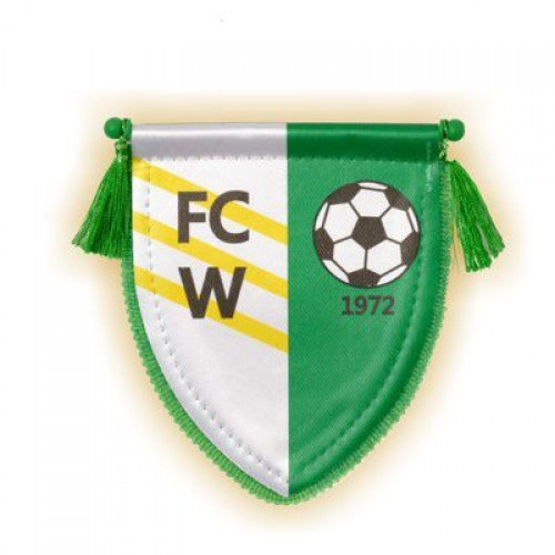 Wimpel FC WALD